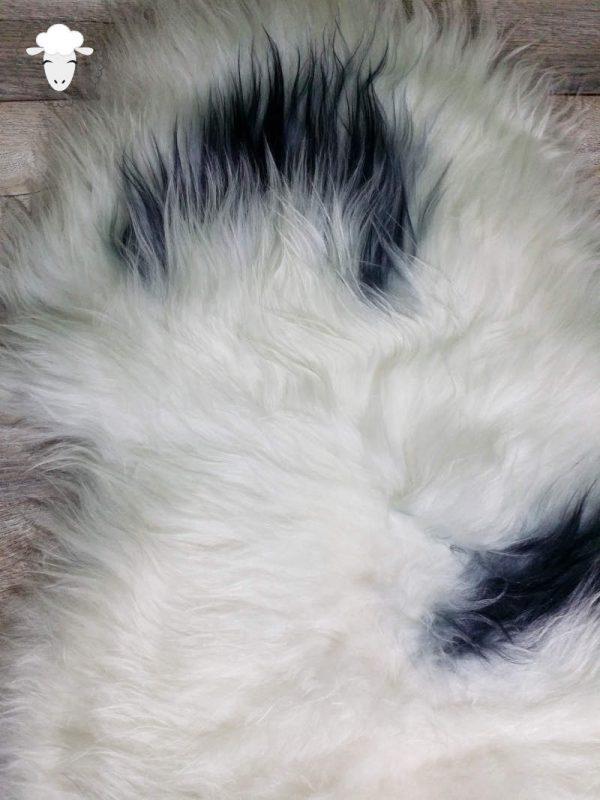 Schapenvacht IJslands Wit met Zwarte Vlekken (Close)